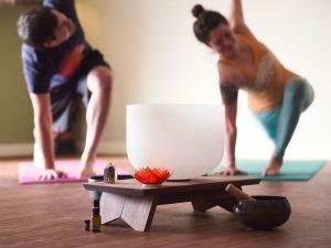 classes_holistic_yoga_school