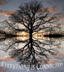tree_of_life copy